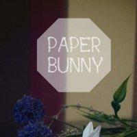 бумажный кролик :: Софья Лейкина