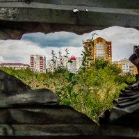 Курск-город контрастов... :: Копыткина Юлия
