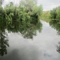 В низовье Днепра :: Сергей Рубан