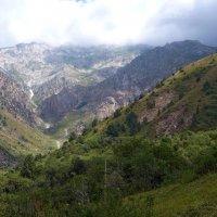 Горы Узбекистана. :: Валерия Калашникова