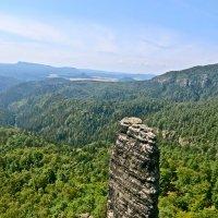 скалы Чешской Швейцарии :: Елена