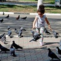 Девочка и голуби :: Владимир