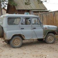 Самый подходящий вид транспорта для дорог Ольхона :: Галина