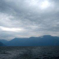 Все тот же южный берег ,о.Телецкое. :: Любовь Иванова