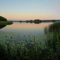 Тихое озеро. :: Laborant Григоров
