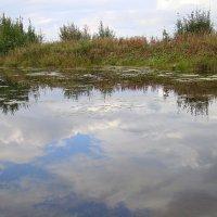 В реку смотрятся облака :: Елена Перевозникова
