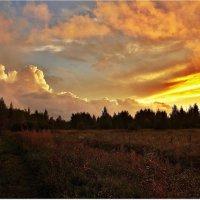 Вечернее небо :: Вячеслав Минаев