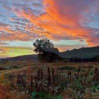 утро.облака.начинается осень... :: юрий иванов