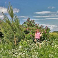 Лето в деревне :: Валерий Талашов