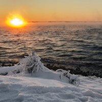 Январский закат на Нововоронежском водохранилище. :: Юрий Клишин