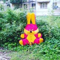 И снова заяц в Подмосковных Люберцах! :: Ольга Кривых