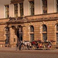 Различные виды транспорта в Дрездене :) :: Татьяна Каримова