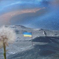 Космические мечты украинского одуванчика :: Алекс Аро Аро