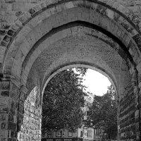Сквозь арку :: Alexander Andronik