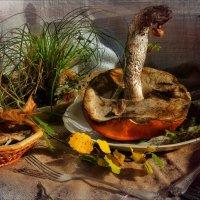 Завтрак с травой :: Ирина Сивовол