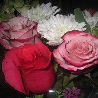 Букет из роз и хризантем :: Елена Семигина