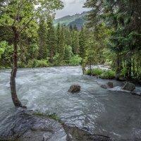 река Гоначхир после июньских дождей :: anatoly Gaponenko