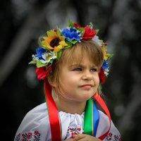 На День Независимости... :: Павел Петрович Тодоров