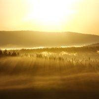 Рассвет над тайгой :: Александр Чазов