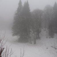 Зима в горах :: Надежда