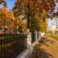 Осенняя политра :: Saloed Sidorov-Kassil