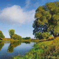 Ещё река во власти отражений... :: Лесо-Вед (Баранов)