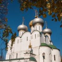 Смоленский собор Новодевичьего монастыря :: Alexander Petrukhin