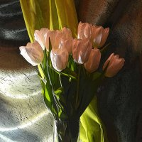 Белые тюльпаны :: Татьяна Евдокимова