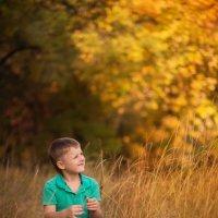 осень :: Ира Фалина