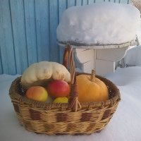 Осень зиму кормит. :: Елена *
