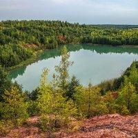 Рукотворное озеро :: Анатолий