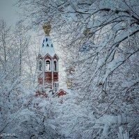 Собор  иконы Казанской Божьей Матери :: Ирина Антоновна