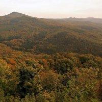 осени панорама. :: Alexander