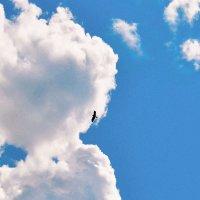 А в небе.... :: Юрий