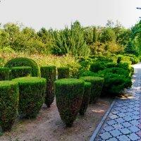 ох, сложна работа садовника :: Андрей Козлов