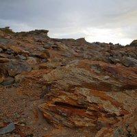 Желтые скалы :: Александр