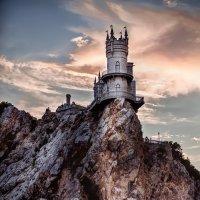 Ласточкино гнездо :: Татьяна Сажина