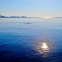 Навстречу утреннему солнцу :: Виктор Шандыбин