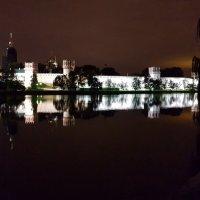 Ночная Москва (Новодевичий монастырь) :: Ольга Русанова (olg-rusanowa2010)