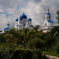 Свято-Боголюбов женский монастырь :: Светлана .