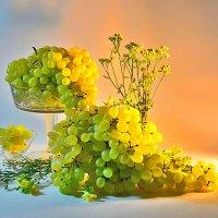 Виноград - два кило :: Наталия Лыкова