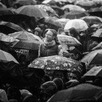 Дождь :: Ежъ Осипов