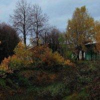 Ненастный день :: Надежда Бахолдина