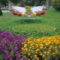 Бабочка-цветочница :: марина ковшова