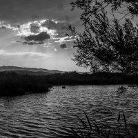 B/W закат :: Дмитрий Потапкин