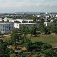 Мюнхен. Скромные дачки... :: Александр Скамо
