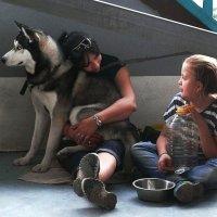 Выставка собак 11.09.16 :: Асылбек Айманов
