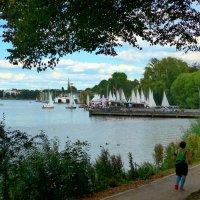 На озере Альстер (серия) Пробежка вокруг озера :: Nina Yudicheva