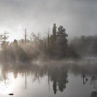 А в тайге по утрам туман... :: Евгений ...