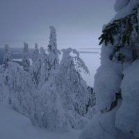 Зима в Суоми. :: Марина Домосилецкая